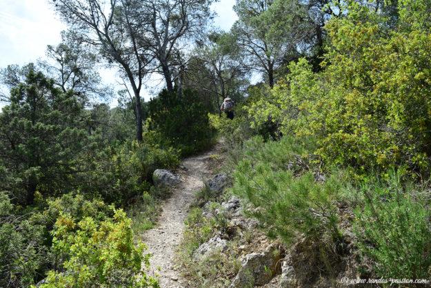 Le sentier du Castillo de la Estaca