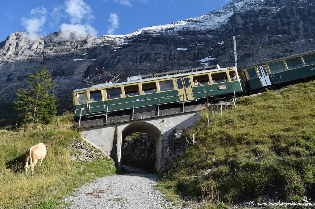 Le train de Jungfraujoch