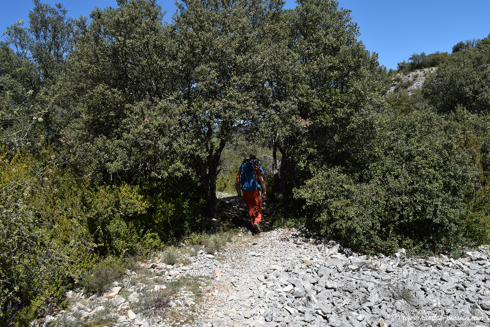 Sur le Camino de las Escaleretas - Sierra de Guara