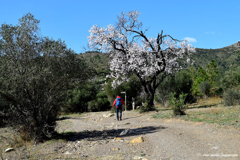 Sentier du col d'en Fraguem - Roses