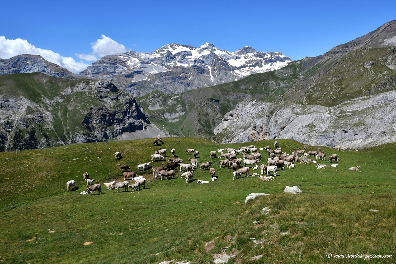 Le plateau de la Sierra de Liena - Aragon