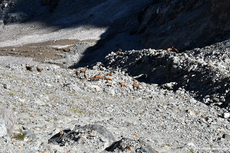 La moraine du Clos des Sables - Massif de la Meije