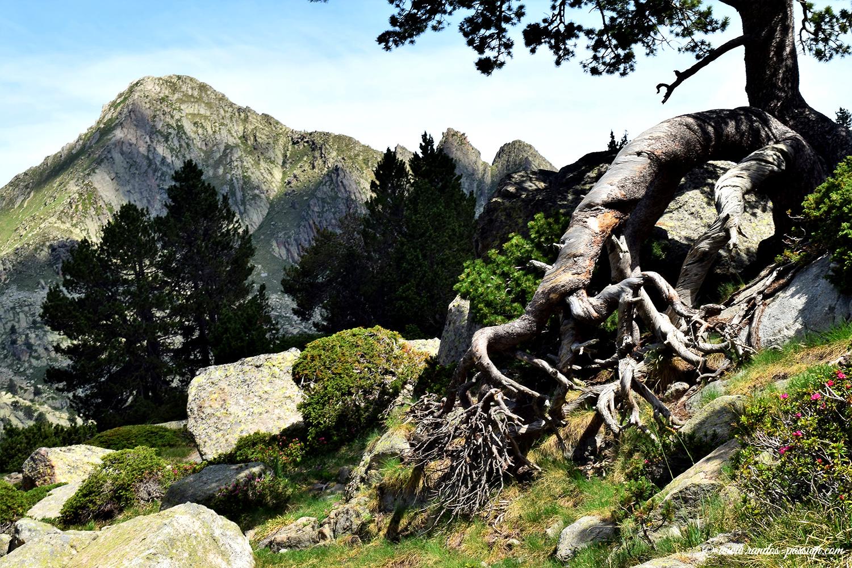 Randonnée au refuge de Mataro - Vall Gerber - Catalogne