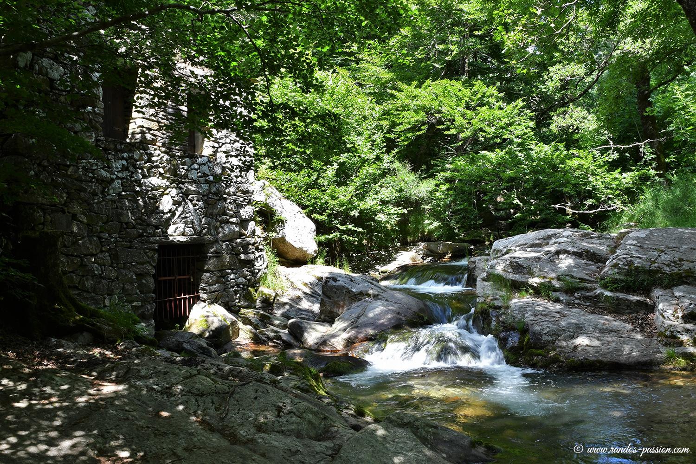 Le ruisseau d'Arles à La Fage