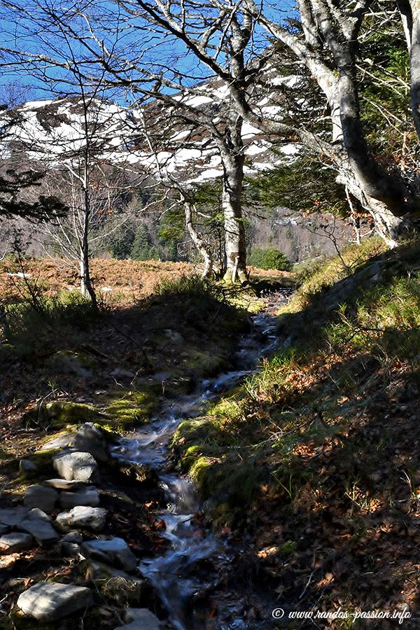 Ruisseau du Courtaou de la Lit - Vallée de Lesponne