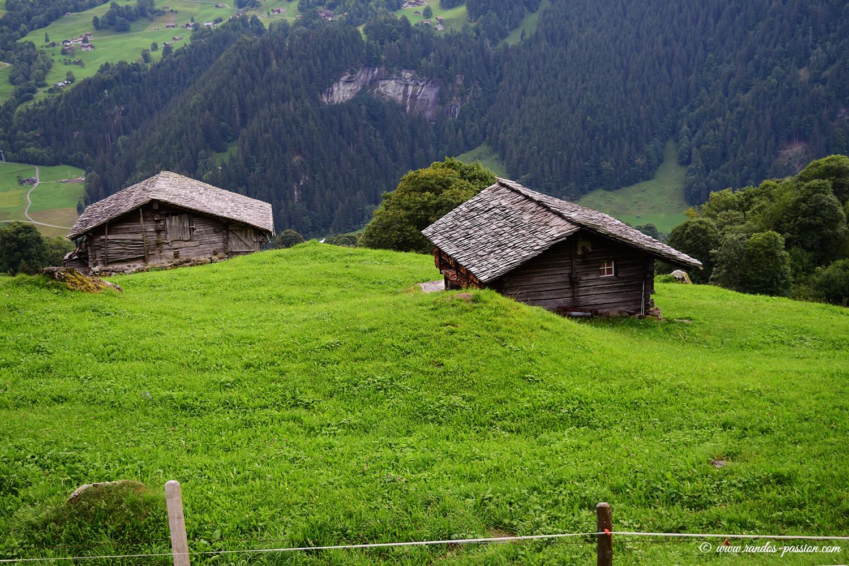 Chalets d'alpage à Bussalp Grindelwald