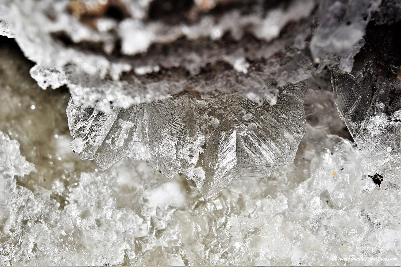 Cristaux de sel