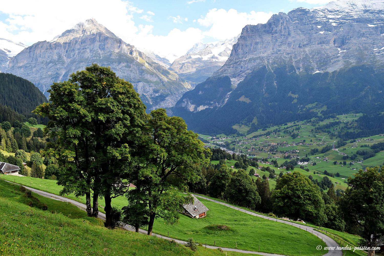 De Bussalp à Grindelwald