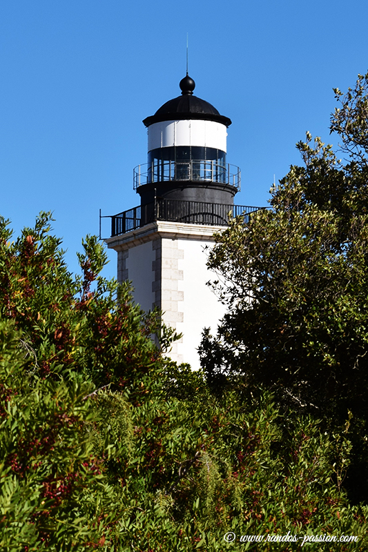 Le phare du Cap Camarat