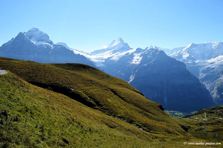 Le Wetterhorn et le Schreckhorn