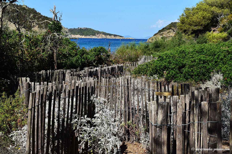 Plage de la Palud - Port-Cros