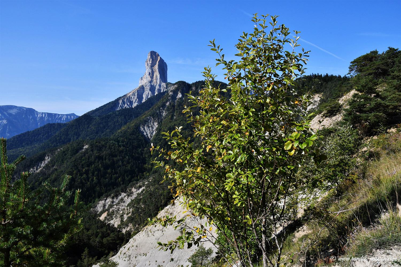 Randonnée au pic de l'Aubeyron - Vercors
