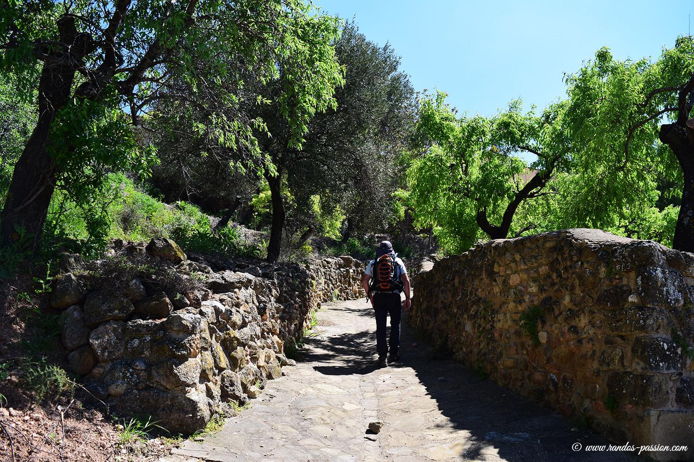 Agüero en Aragon