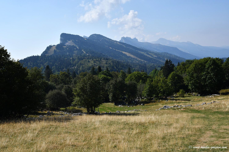 Le plateau des Ramées - Vercors