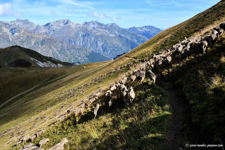 Randonnée col de la Croix de Fer - Col du Glandon