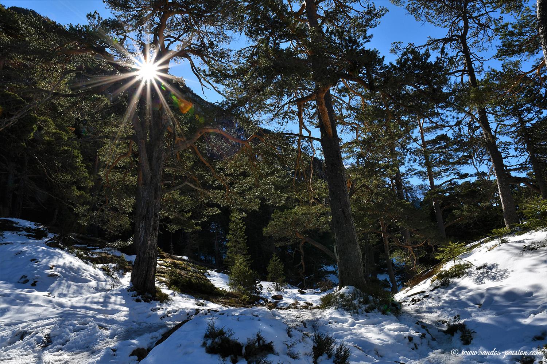 Sentier du lac de Gaube